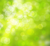 Beautiful green bokeh background — Stock Photo