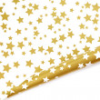 Stock Photo: Gold star background