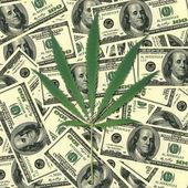 Bir kenevir yaprak. arka plan para — Stok fotoğraf