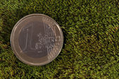 Lost coin lays on a moss — Stock Photo