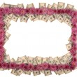 Frame made from dollar and flowers — Stock Photo