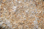 Brown structure of a granite — Stock Photo