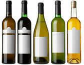 Set 5 bottles with white labels — Stock Photo