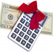 Calculating the Cost of the Holidays — Stock Photo #4015935