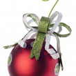Festive Holiday Ornament — Stock Photo #4016127
