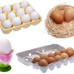 Variety of Eggs — Stock Photo