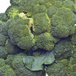 Stock Photo: Healthy Broccoli Stalks