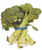 Talos de brócolis saudável — Foto Stock