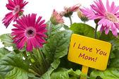 šťastné matky den s květinami — Stock fotografie