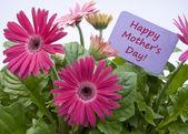 Dzień matki happy z kwiatami — Zdjęcie stockowe