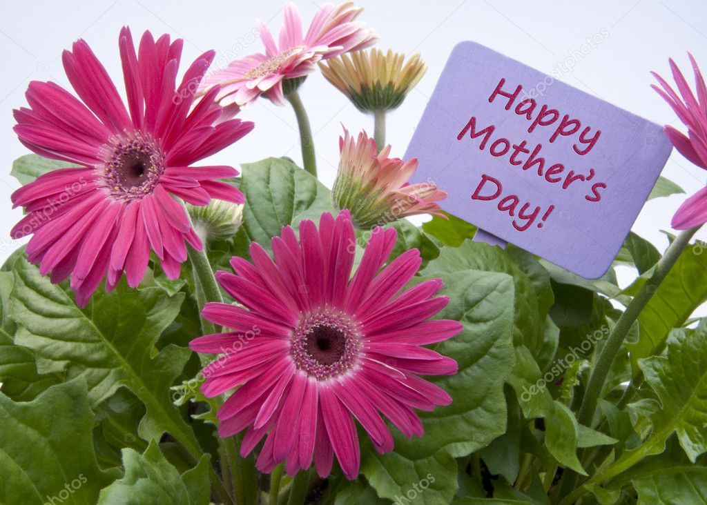 Happy Mothers Day with Flowers and Sign with Text. — Stock fotografie #4756152