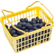 Yellow Shopping Basked Full of Blueberries — Stock Photo
