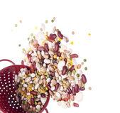 Ljust färgade bönorna i ett durkslag gränsen bild — Stockfoto