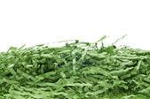 Herbe décorative de pâques — Photo