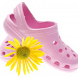 Pink Garden Clogs with Daisy - Stock Photo