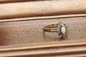 Detail of Antique Ring — ストック写真