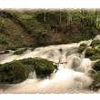 Vintage photo of forest waterfall. Saved with clipping path. - Foto Stock