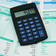 Payroll summary details - Stock Photo