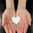 Paper heart in a hands — Foto Stock