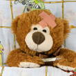 Foto Stock: Ill brown Teddy-bear