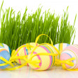 Ornate easter eggs with grass — Stock fotografie