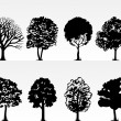 Park trees — Stock Vector
