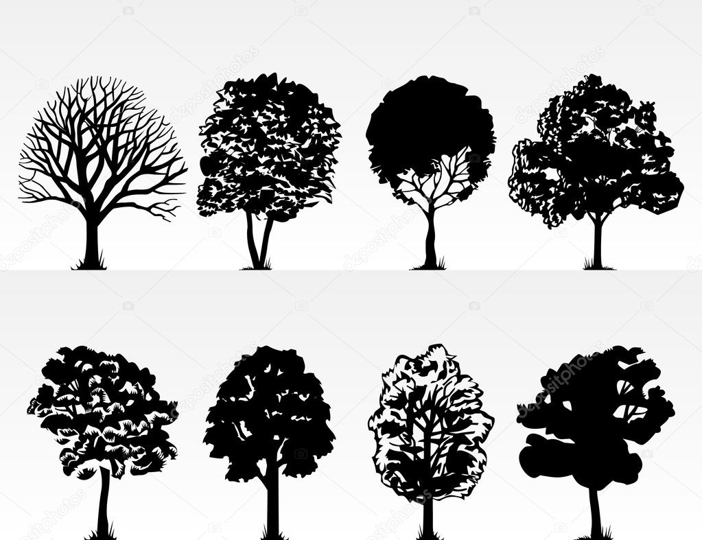 Silhouettes of trees on a white background. A vector illustration  Stock Vector #4247374