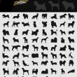 Collection of dogs — Vector de stock
