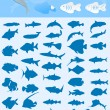 Collection of fishes — Stock Vector
