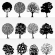 Stock Vector: Park trees2