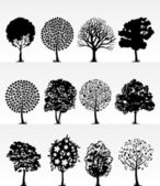 Park trees2 — Stock Vector