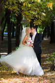 The groom kisses his bride. — Стоковое фото