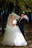 Groom holds his bride — Stock Photo