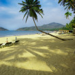 Royalty-Free Stock Photo: Tropical beach of Palolem, Goa state, India