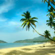 Stock Photo: Tropical beach of Palolem, Goa, India