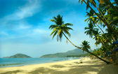 Tropical beach of Palolem, Goa, India — Stock Photo