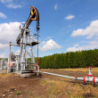 Oil pump jack — Stock Photo #4323049