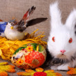 Easter still life — Stock Photo #5038452