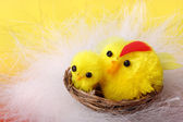 Easter chickens in the nest — Stock Photo