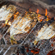 Fish roasting on fire - Stock Photo