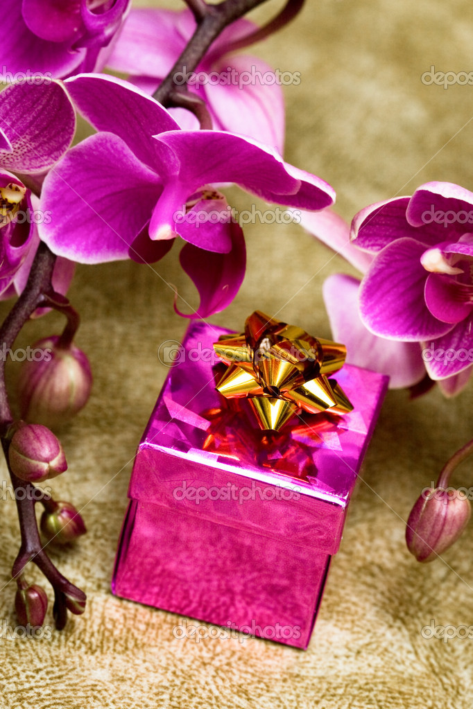 Gift box with purple orchid — Stock Photo #3949400