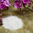 Spa essentials (bath salt and flowers of orchids) — Stock Photo #3951094
