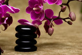 Spa essentials (pyramid of stones with purple orchids) — Stock Photo