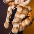 Beautiful womin fur coat — Stock Photo #3978657
