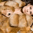 Beautiful woman in a fur coat - Stock Photo