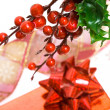 Gift box with european holly - Stockfoto