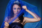 Beautiful girl with diamond crown and veil — Stock Photo