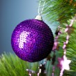 Branch of Christmas tree with festive ball — 图库照片