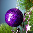 Branch of Christmas tree with festive ball — Stock fotografie