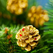 Royalty-Free Stock Photo: Branch of Christmas tree with pinecone